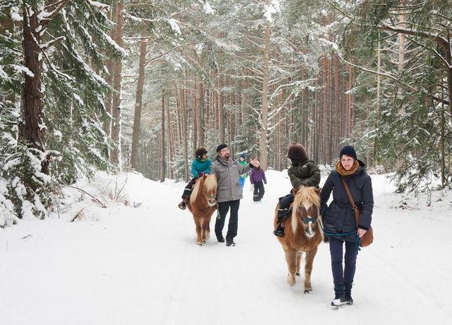 Ponyreiten-Landhotel-Stern-Winter.jpg