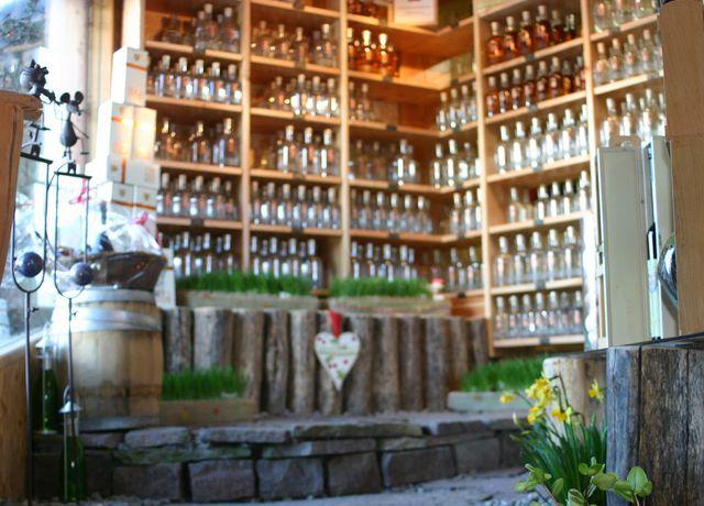 Mairs-Beerengarten-in-Rietz.jpg