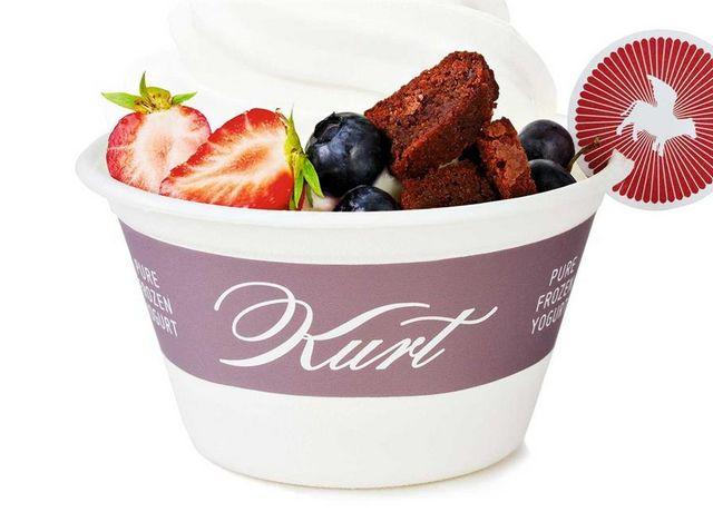 Kurt-Frozen-Yogurt-2.jpg