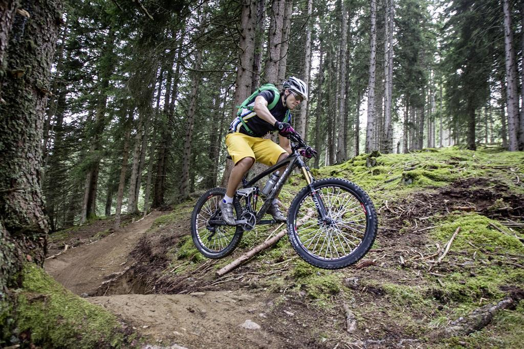 Mountainbike Stadl