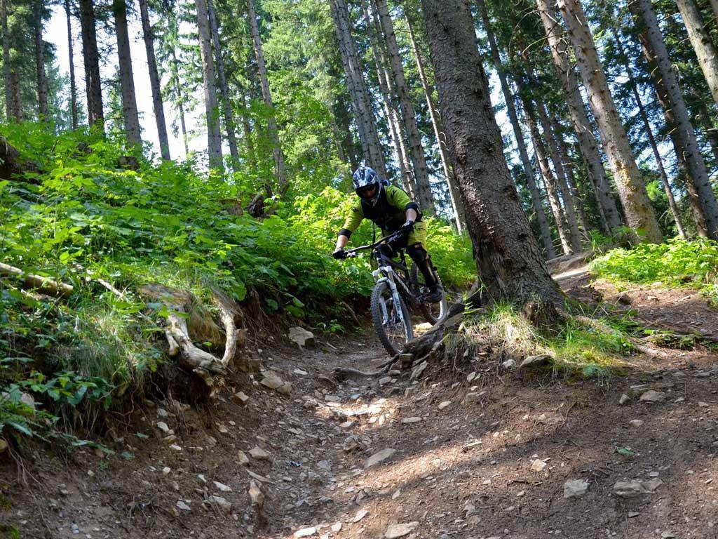 Bikeacademy Innsbruck / Bikeguiding Tirol