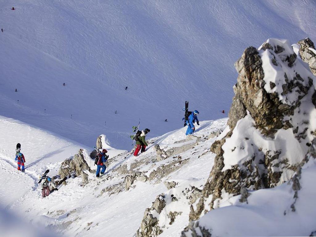 FREERIDE DIVISION -  Freeride, Ski, Snowboard & Bergsteigerschule
