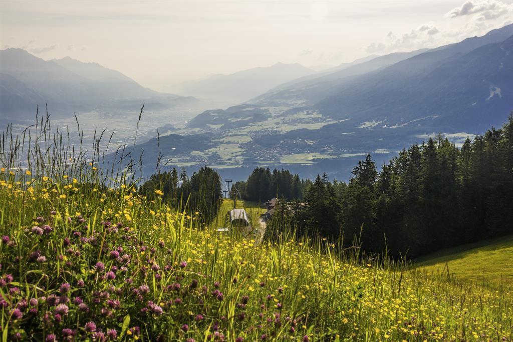 Naturdenkmal Hirschlacke Mutters