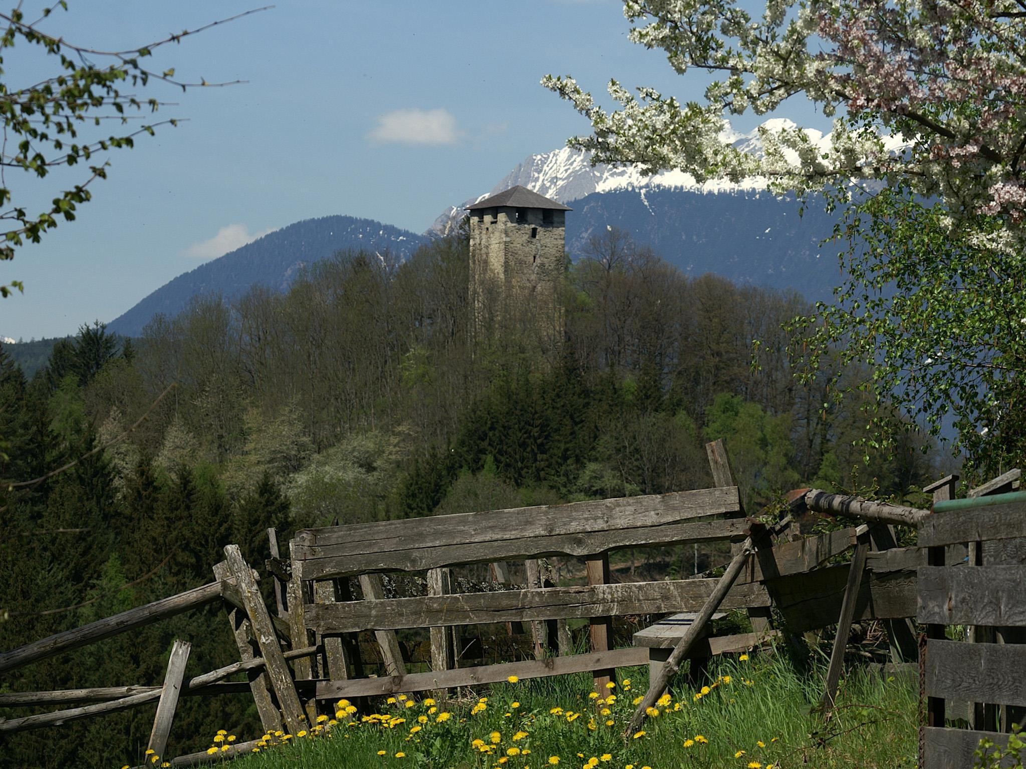 Ruine Hörtenberg